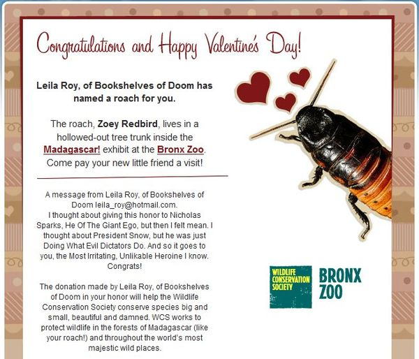 Zoey Redbird, You Are a Tool - Happy Valentine's Day!