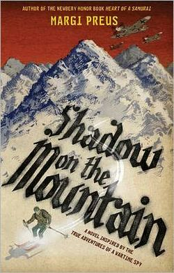 Shadow on the mountail